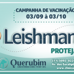 Leishmaniose Canina ou Leishmaniose Visceral Canina